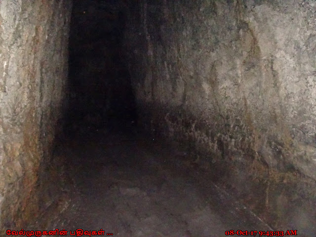 Ape Cave Lava Tubes