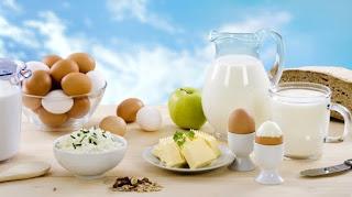 peynir, süt, yumurta, yoğurt
