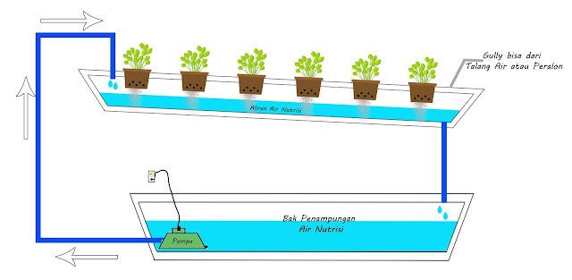 Sistem Hidroponik NFT