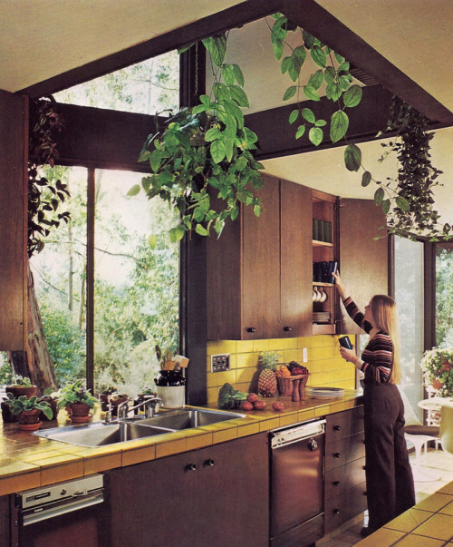 It's A Jungle In There: Invasion Of The 1970s Houseplants