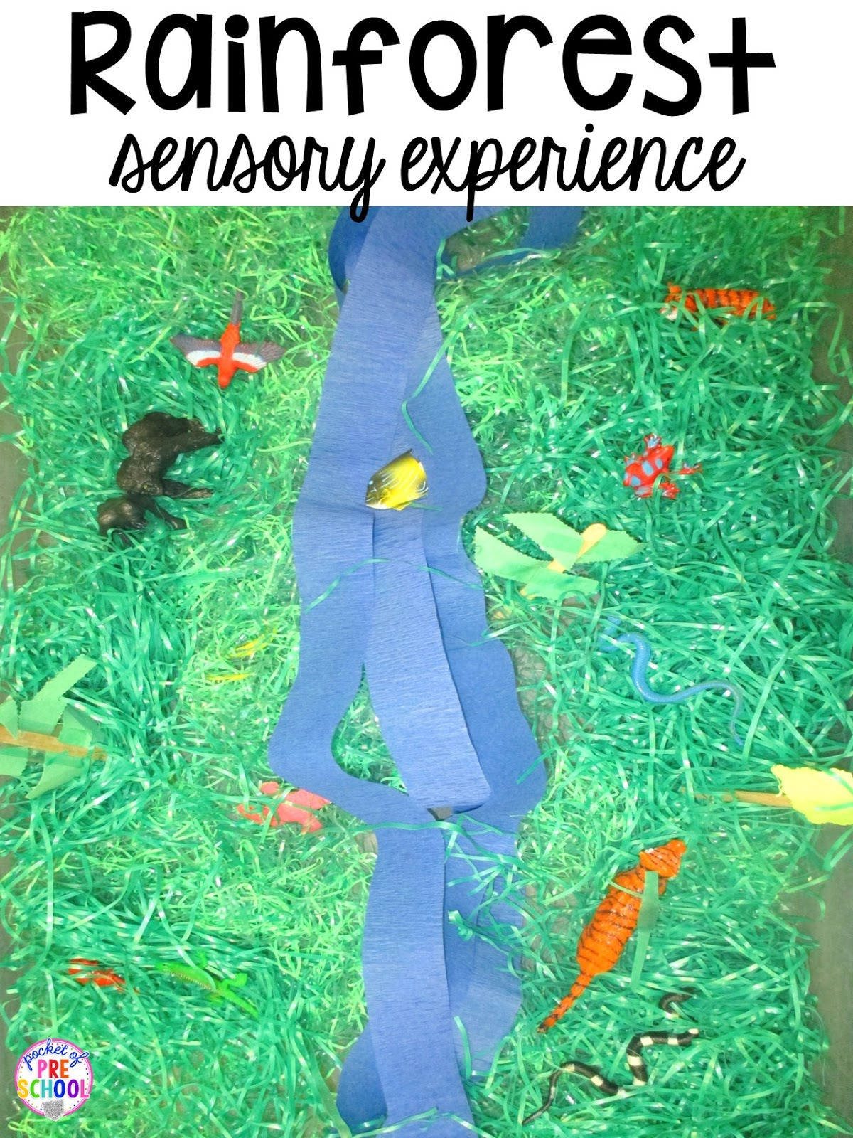 Zoo Centers and Activities (Free Desert Art Activity) - Pocket of ...