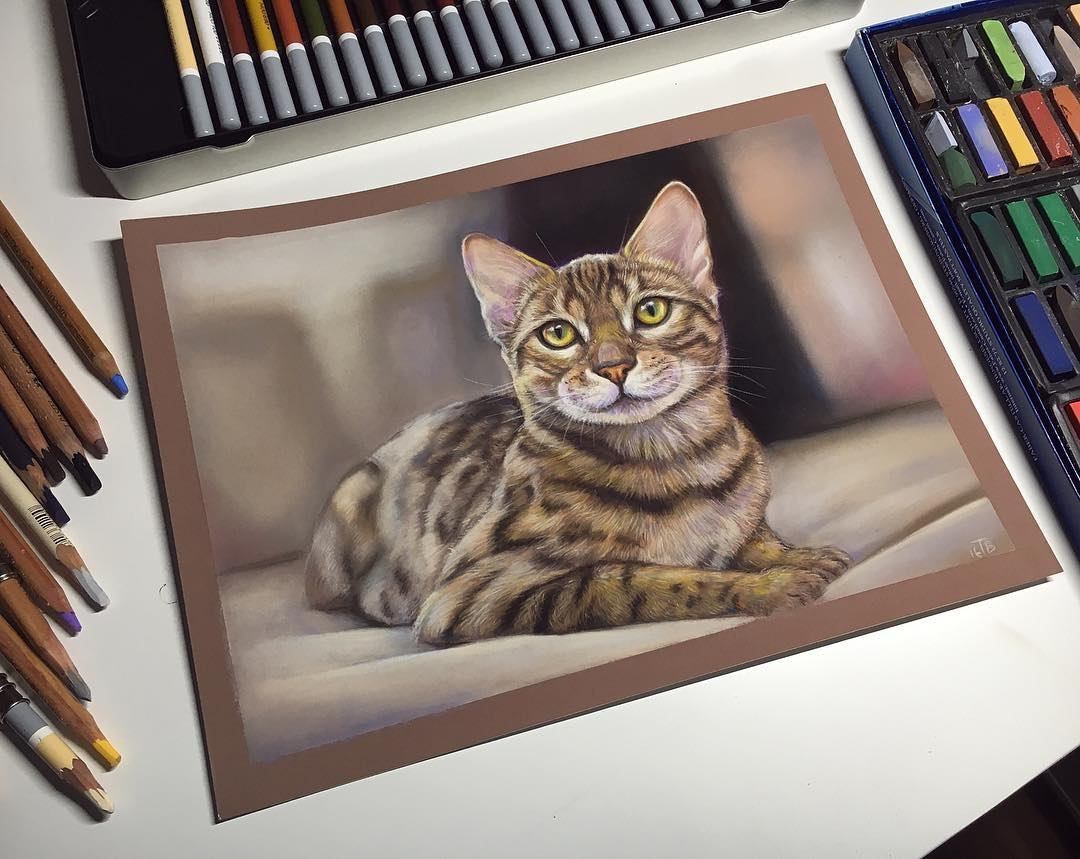 02-Bengal-Cat-Tatjana-Bril-Domestic-and-Wild-Animal-Drawings-www-designstack-co