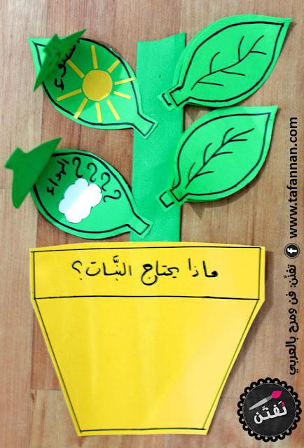 ماذا يحتاج النبات نشاط فني من تفنن plants need