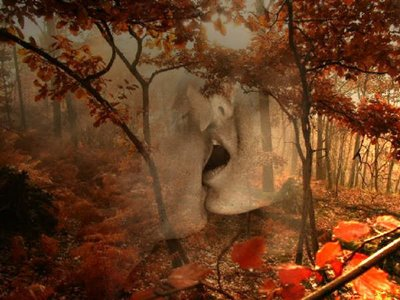 Resultado de imagen para recuerdos del amor en otoño