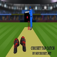 Play Cricket Tap Catch Game