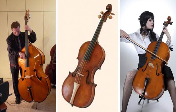 Alat Musik Gesek Pengertian Dan 5 Contoh Lengkap Dengan Gambar