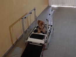aparelho de fisioterapia
