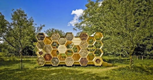 Unique Honeycomb Hotel For People And Bees