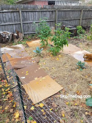 Why We Laid Cardboard In The Garden