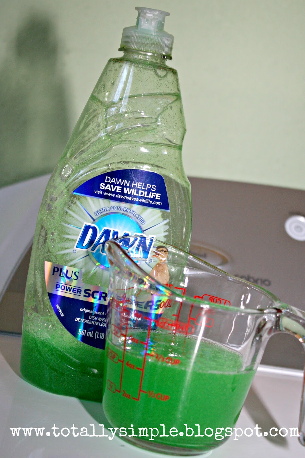 Diy Dawn Dish Soap Stain Remover