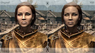 Skyrim Mod: Character Enhancement