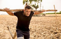Sultan 8th Day (Wednesday) Box Office Collection