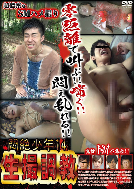 Acceed Agony boys Vol.14 悶絶少年14 生撮調教