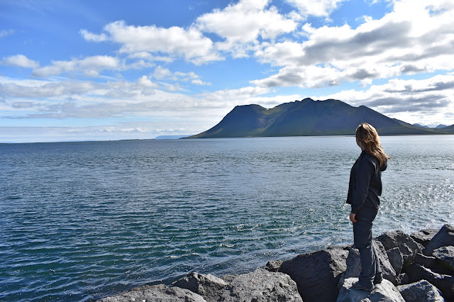 Morze i góry Islandii