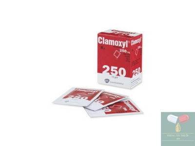 Thuốc kháng sinh Clamoxyl 250 mg