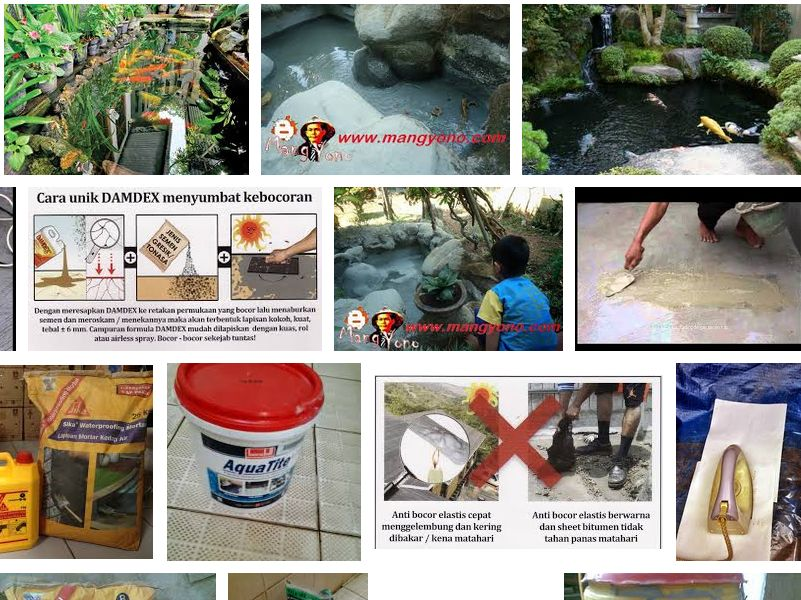 Cara Mengatasi Kolam Ikan yang Rembes dan Bocor