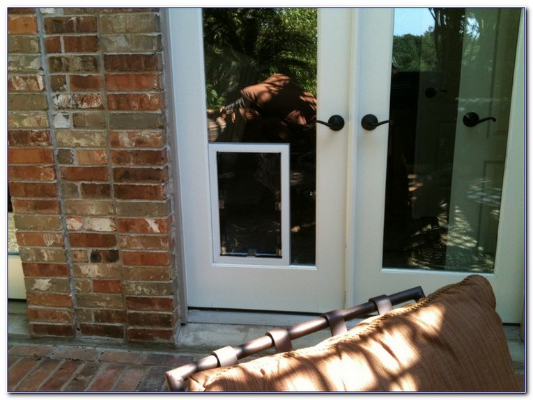 Dog Door In Glass Window Home And Car Window Glass Tinting