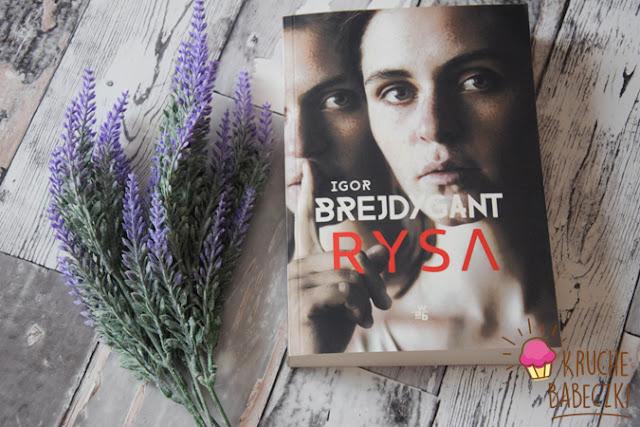 Rysa - Igor Brejdygant