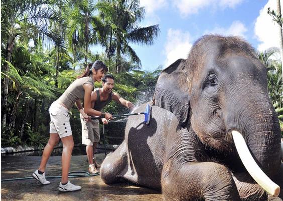 Kunjungi 4 Tempat Wisata di Mataram Ini