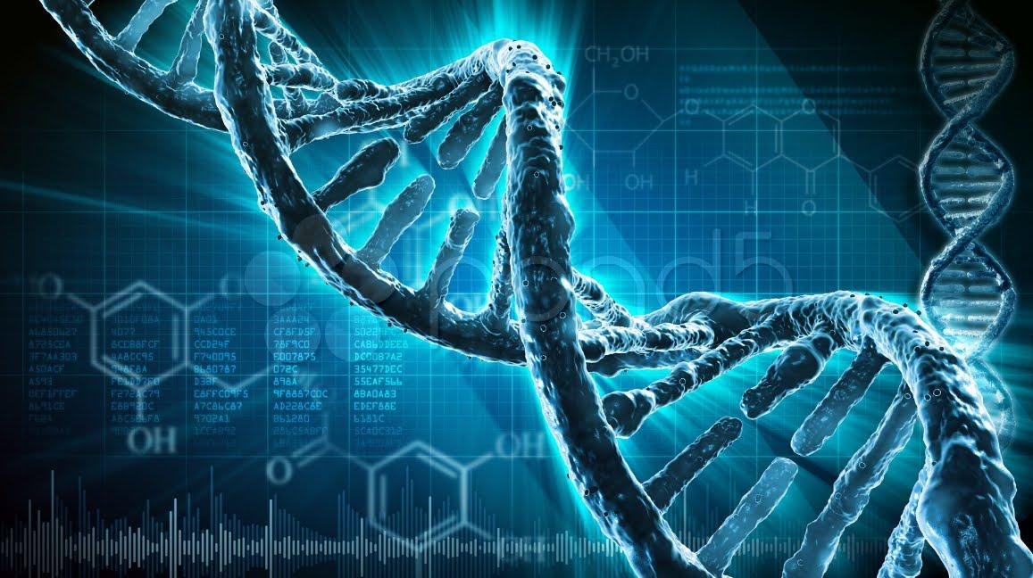 Il nostro DNA è un biocomputer con funzioni medianiche: telepatia, irradiazione e contatto interdimensionale.