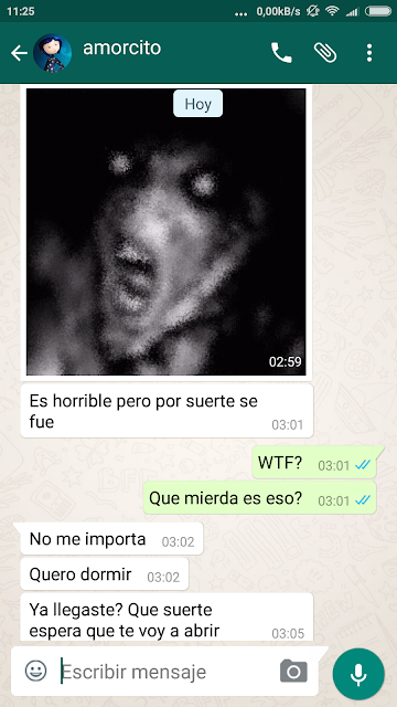 terror whatsapp