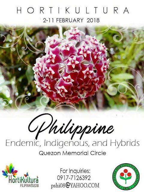 Horikultura Filipina 2018 ranneveryday