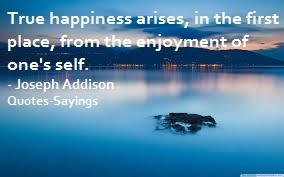 enjoyment quotes