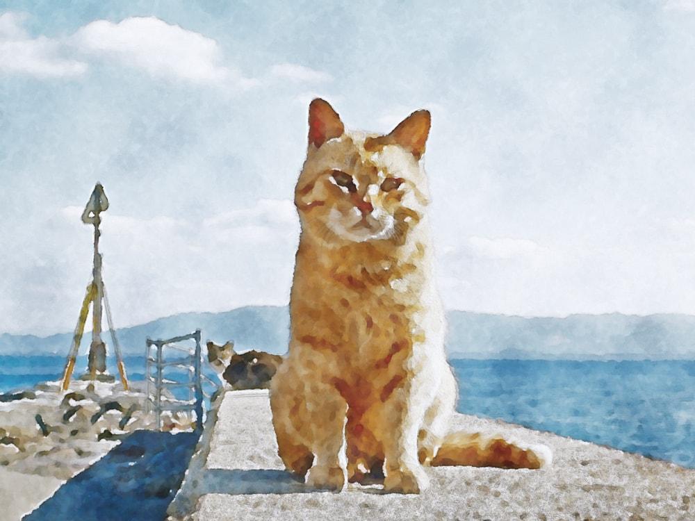 水彩画の猫