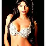 Sherlyn Chopra Hot HD Photos