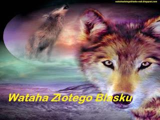 http://watahazlotegoblasku-wzb.blogspot.com/