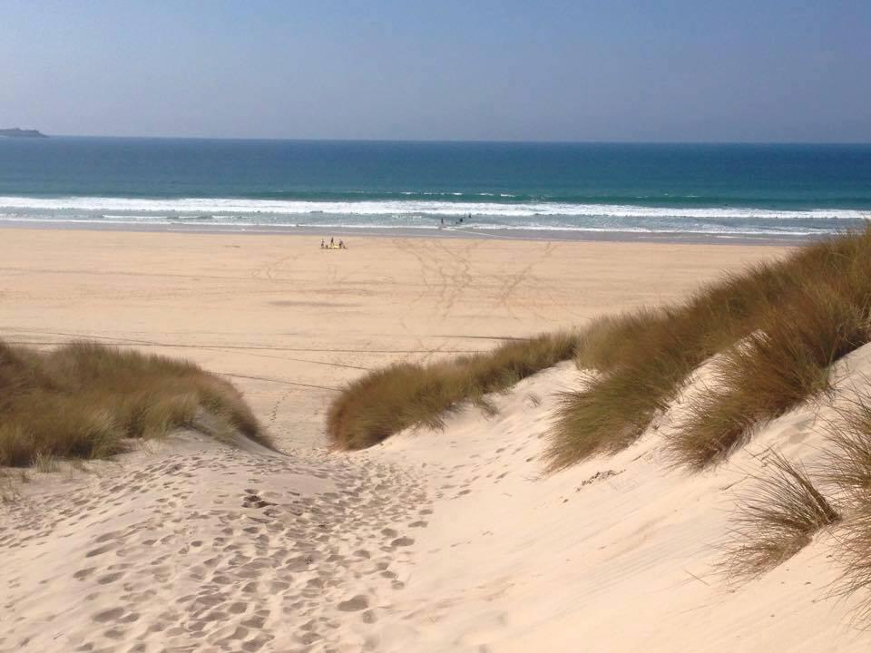 Atlantic Dunes Park Dogs