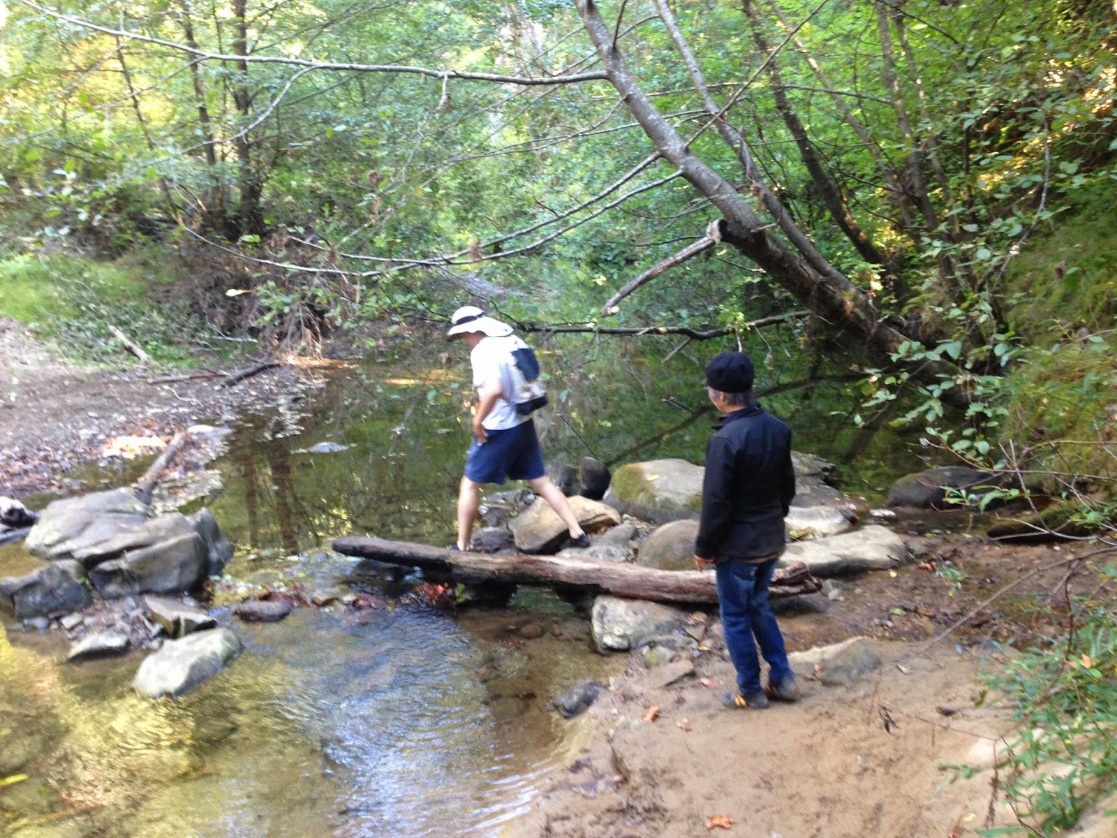 Youngmeeism: Hiking No. 3 Pescadero Creek County Park