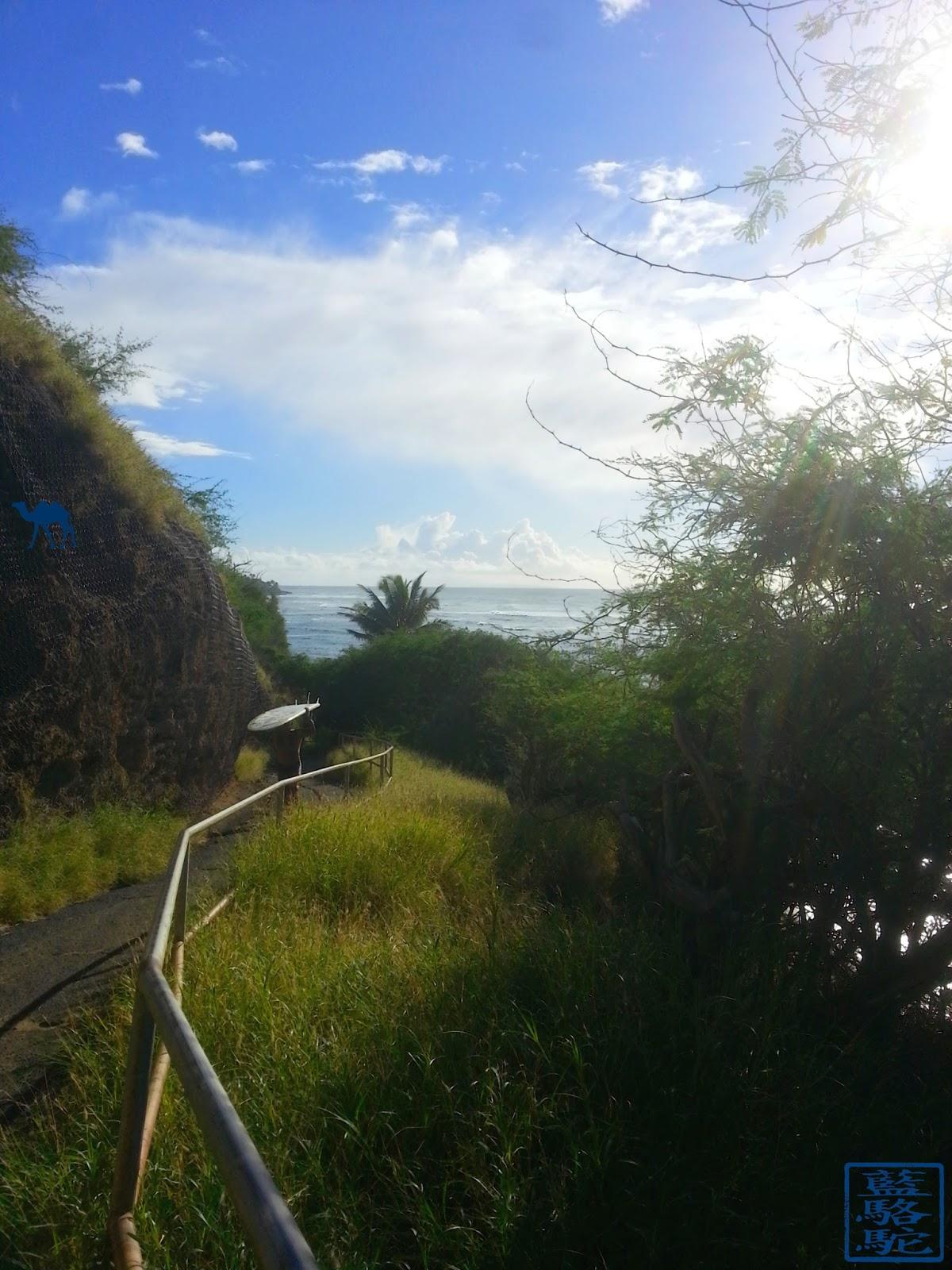 Le Chameau Bleu -Blog Voyage Hawaii - Photographie de Hawaii