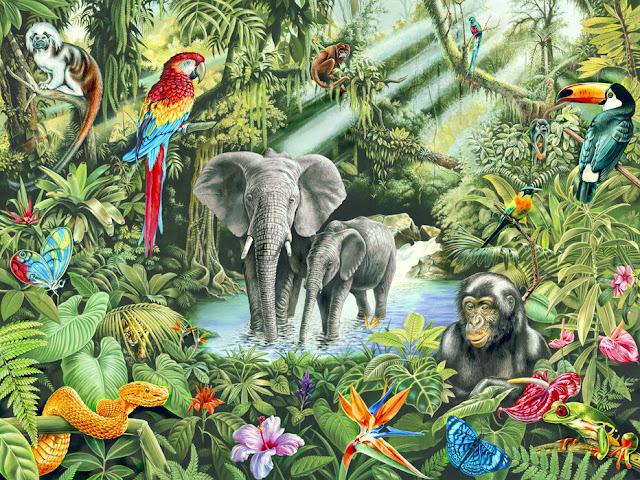 Viidakko tapetti eläimet 3d