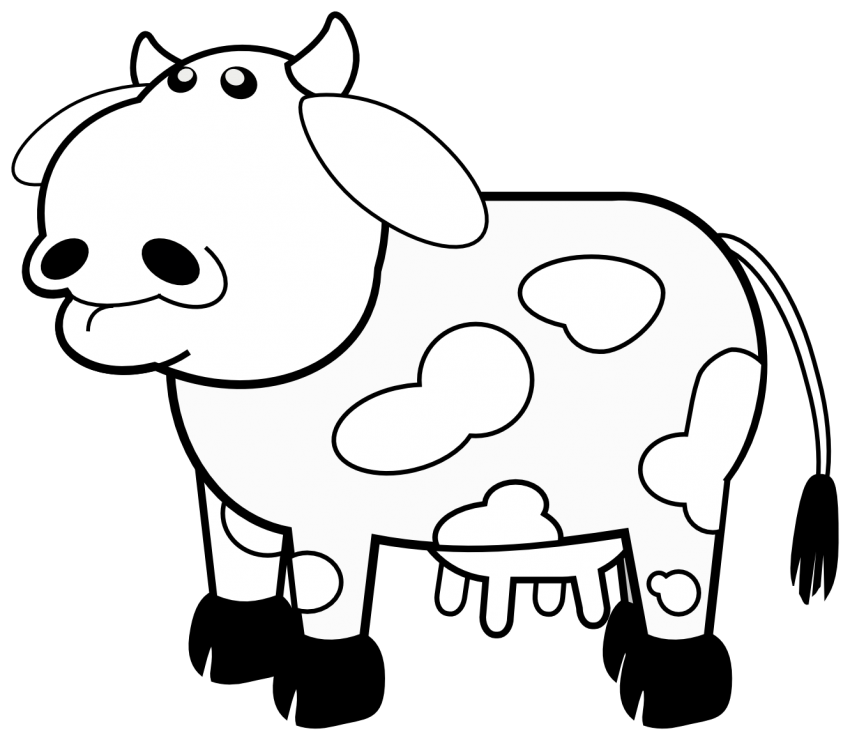 preschool cow coloring pages