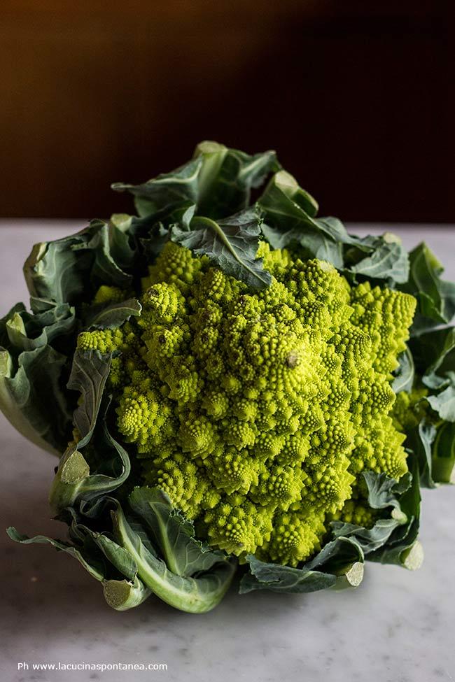 Foto dell'ingrediente principale della pasta, il broccolo romanesco