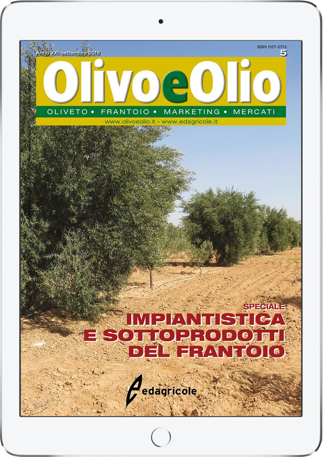can intercropping restore health viability to puglia s damaged olive orchards