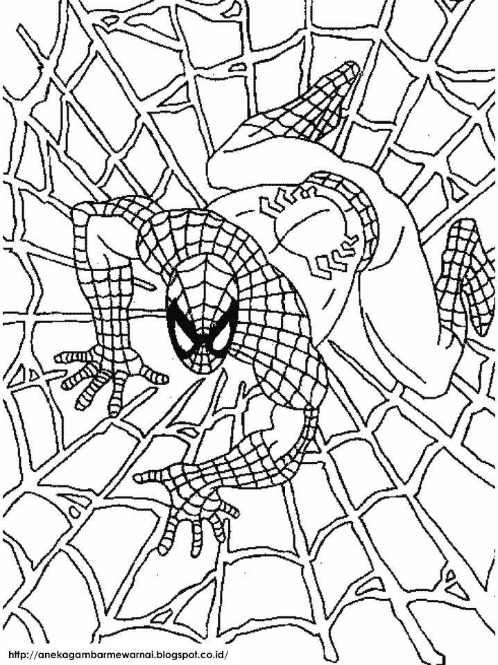 Gambar Mewarnai Spider Man Untuk Anak PAUD dan TK 3