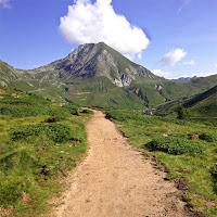 Patika, toprak dağ yolu