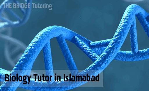 best biology tutors in Islamabad