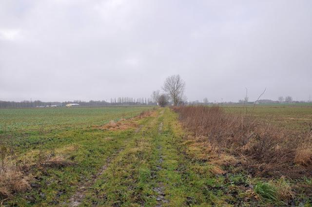 Nastarszy trakt Pomorza - droga używana we wczesnym średniowieczu i w czasach prehistorycznych