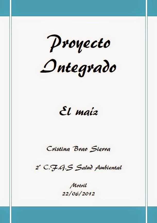 https://sites.google.com/site/fernandomarati/pdf/Proyecto%20Integrado.%20Cristina%20Brao.pdf