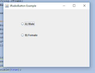 Java JRadioButton