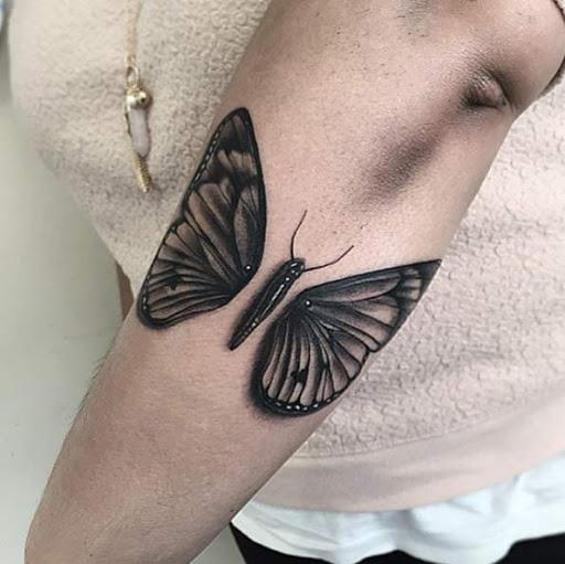Esta infusão de borboleta