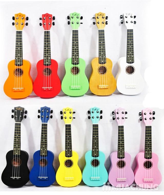 dan ukulele