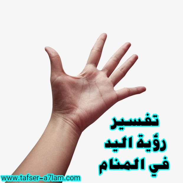 تفسير رؤية اليد في المنام