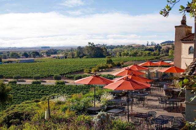 Visita as principais vinícolas de Sonoma
