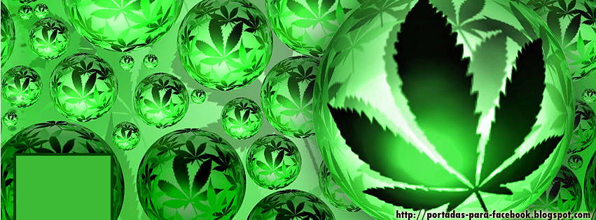 Pin Fotos Marihuana Chidas Pictures On Pinterest