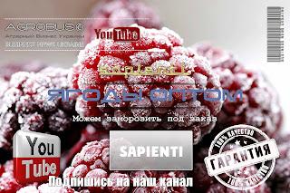 Замороженные ягоды оптом Украина,0957351986, 0985674877, Sapienti