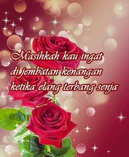 Gambar background bunga mawar merah untuk kata kata status